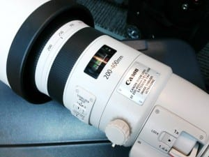 Canon EF 200-400mm f/4 L IS 1.4x