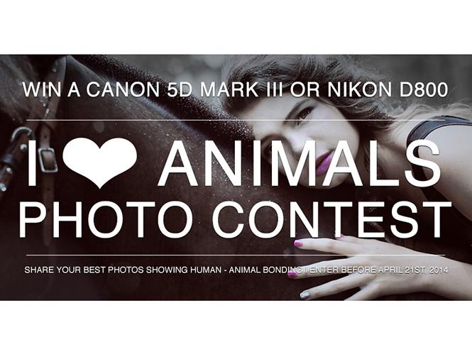 """Διαγωνισμός """"I Love Animals"""". Κέρδισε μία Canon EOS 5D Mark III ή μία Nikon D800"""