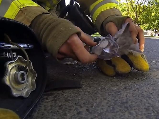 Συγκλονιστικό video με GoPro δείχνει πως ένας πυροσβέστης σώζει ένα γατάκι
