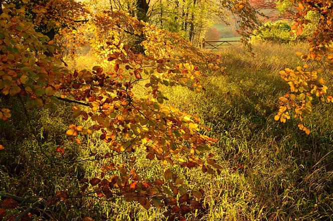 landscape photographer 2013 Cristopher Page