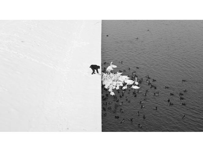 Δείτε τις καλύτερες φωτογραφίες  του Fine Art Photography Competition 2013