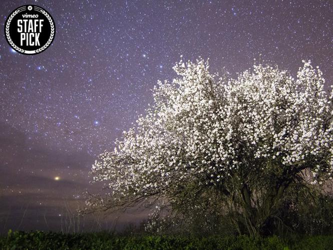 El Cielo de La Palma, δείτε το εκπληκτικό Time Lapse video του ουρανού των Καναρίων Νήσων