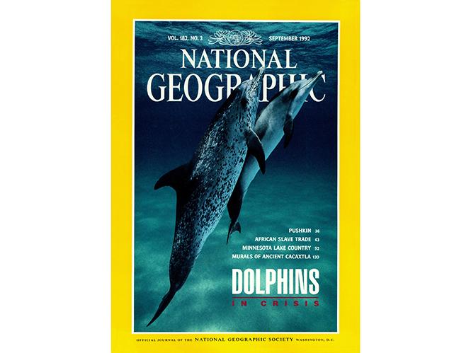 Φωτογράφος βρίσκει και φωτογραφίζει δελφίνι που ήταν εξώφυλλο στο National Geographic πριν 20 χρόνια