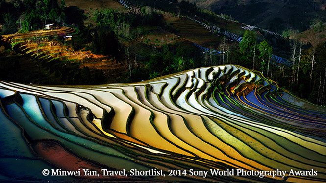 Sony World Photography Awards 2014 FINALISTS 5