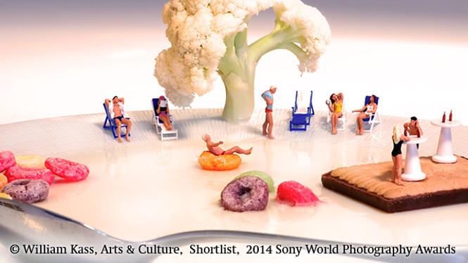 Sony World Photography Awards 2014 FINALISTS 8