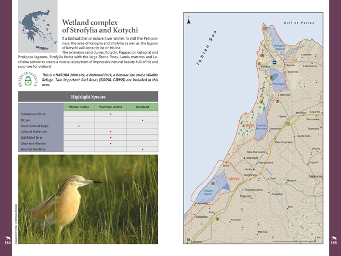 Pages_BirdingGuide_HOS (3)