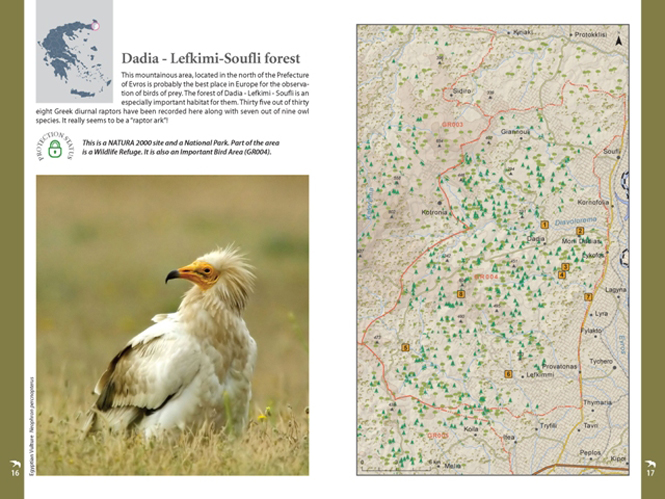 Pages_BirdingGuide_HOS (4)