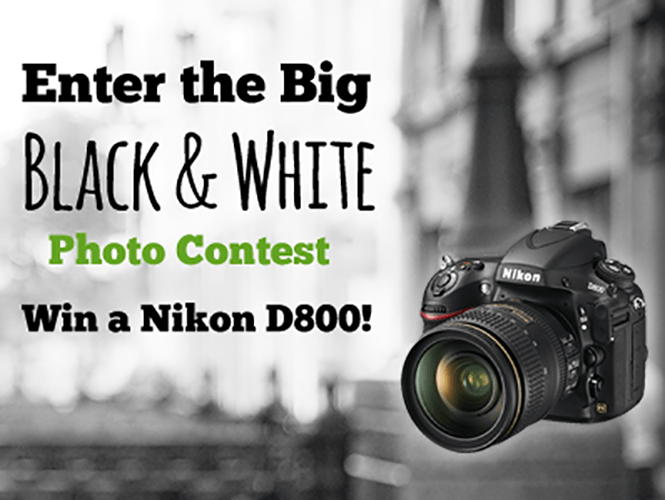 Κέρδισε μία Nikon D800 στον διαγωνισμό Α/Μ φωτογραφίας της Creative Motion Design