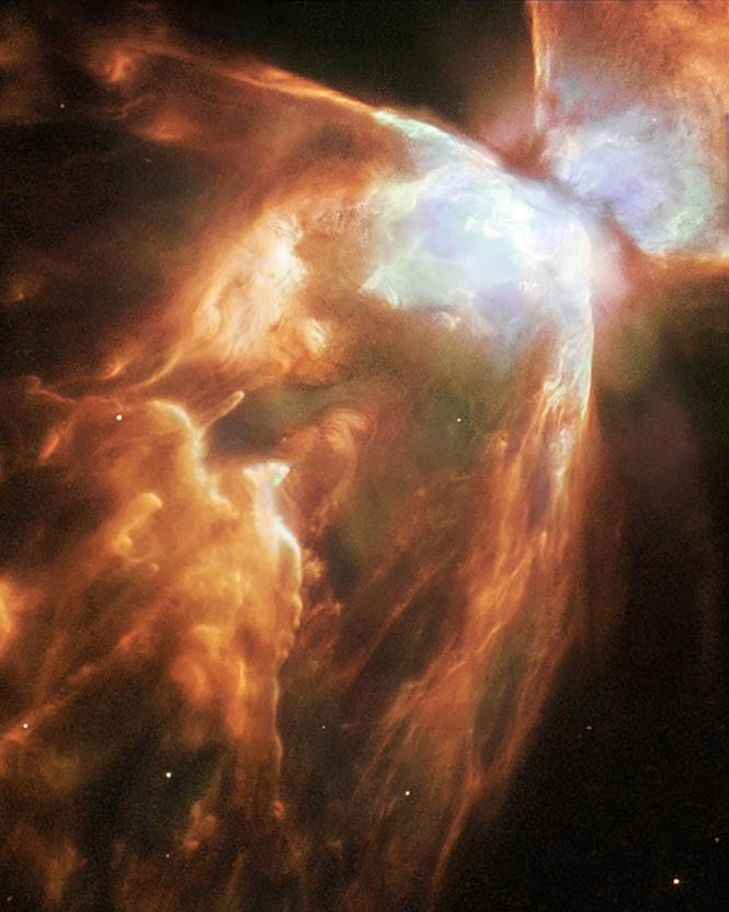 cosmos-4