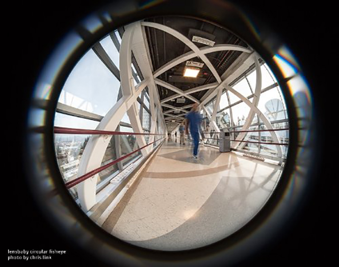 Lensbaby 5.8mm Circular Fisheye