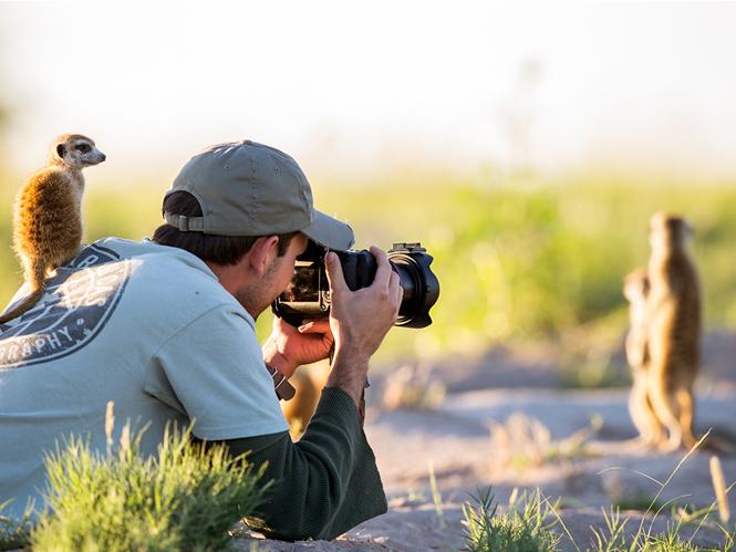 Φωτογράφος άγριας ζωής γίνεται παρατηρητήριο για μία οικογένεια Σουρικάτες