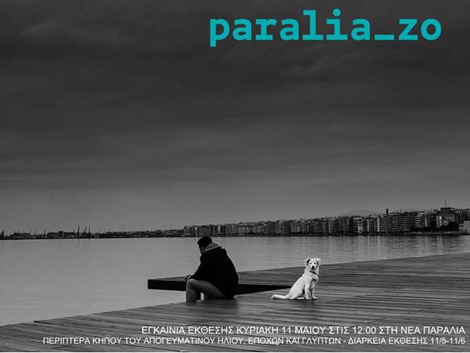 Paraliazo, η έκθεση