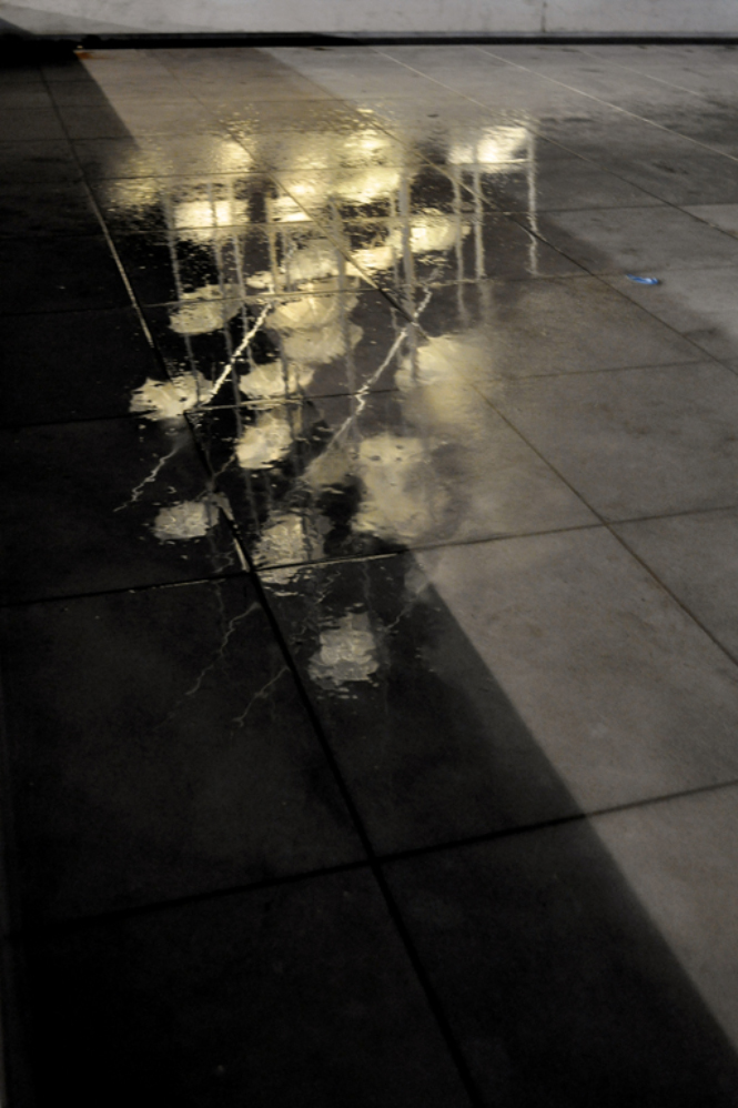 f14 reflections 4