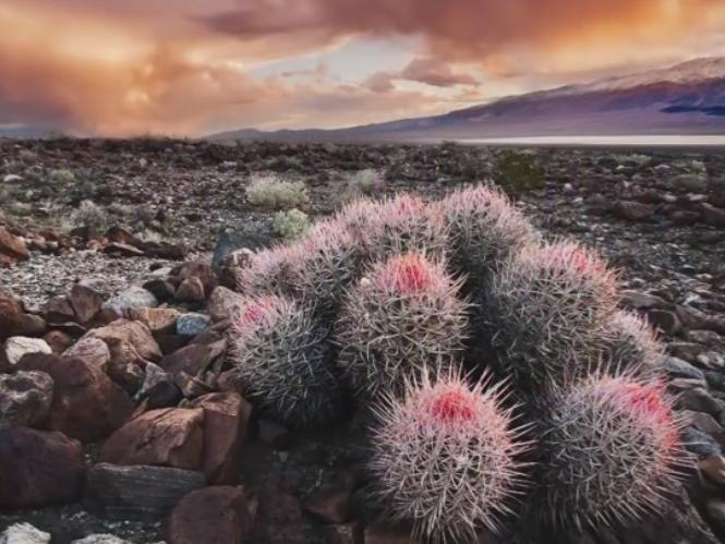 Συμβουλές για φωτογράφιση τοπίου και φύσης από τον Phil Steele