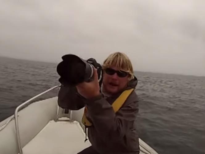 Φάλαινα αναποδογυρίζει σκάφος πετώντας φωτογράφο στο νερό
