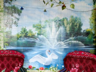 Dreaming walls