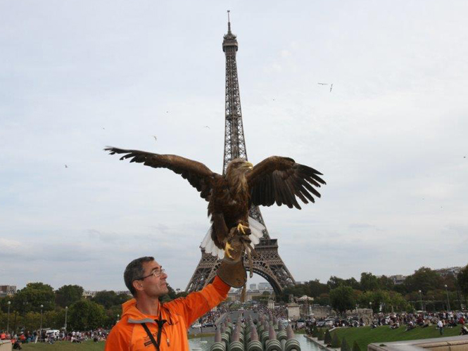 sony-and-eagle-in-paris-3
