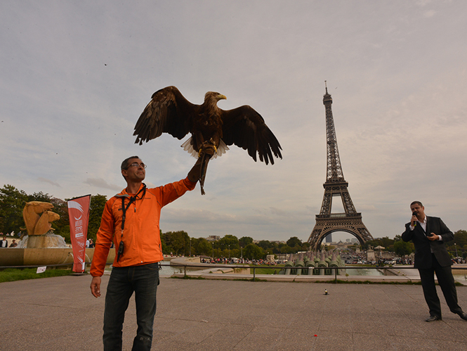 sony-and-eagle-in-paris