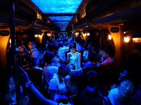A node glows in the dark... - 2014-10-31_296102_people.jpg