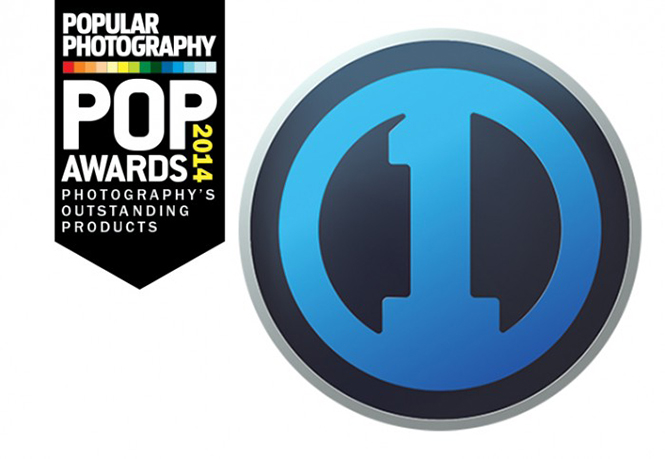 pop-awards-2014-29