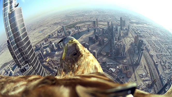 Dubai_Darshan_Flight23_SONY_HDR-AZ1 copy