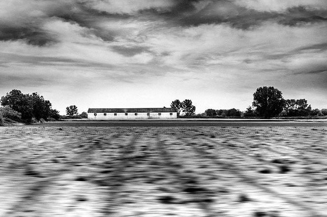 Train##15