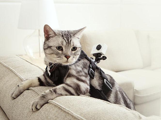 Xiaomi Yi Action Camera-2