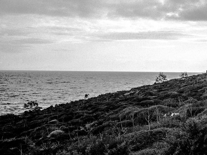 Πλάτων Ριβέλλης, δύο εκθέσεις φωτογραφίας στην Μύκονο