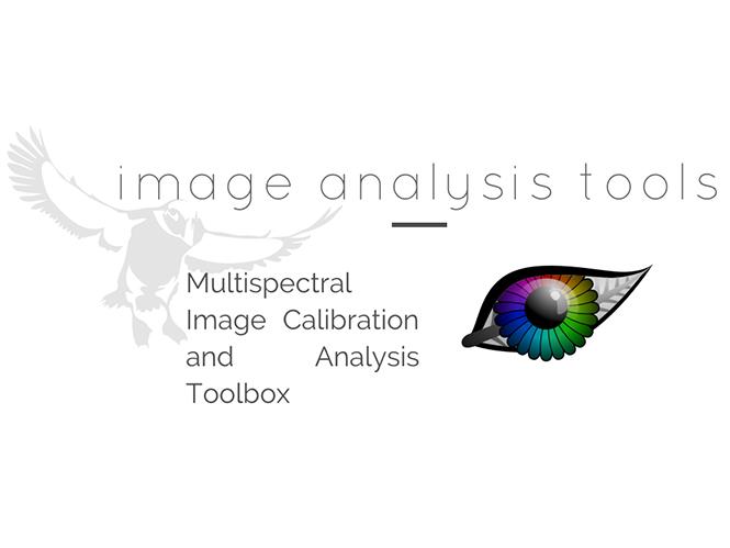 Λογισμικό μας δείχνει πως βλέπουν τον κόσμο τα ζώα