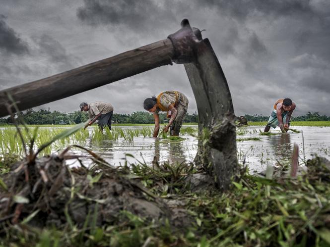 CGAP Photo Contest 2015, ανακοινώθηκαν οι νικητές