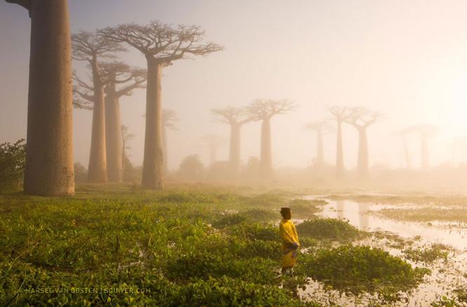 Marsel Van Oosten, Μαγαδασκάρη