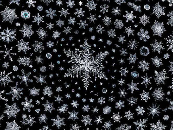 Αυτή είναι η απόλυτη εικόνα νιφάδων χιονιού και χρειάστηκε 2.500 ώρες για να γίνει