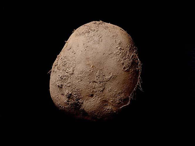 Η φωτογραφία μίας πατάτας που πουλήθηκε για 1.000.000 ευρώ