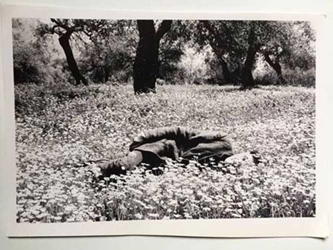 Ηδύφως: ΔΩΡΕΑΝ 3μερο Φωτογραφικό εργαστήριο με τον Παύλο Κοζαλίδη