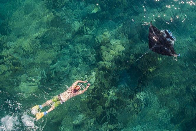 A snorkeller follows a Manta Ray, Yasawa Islands, Fiji by Droneworks NZ