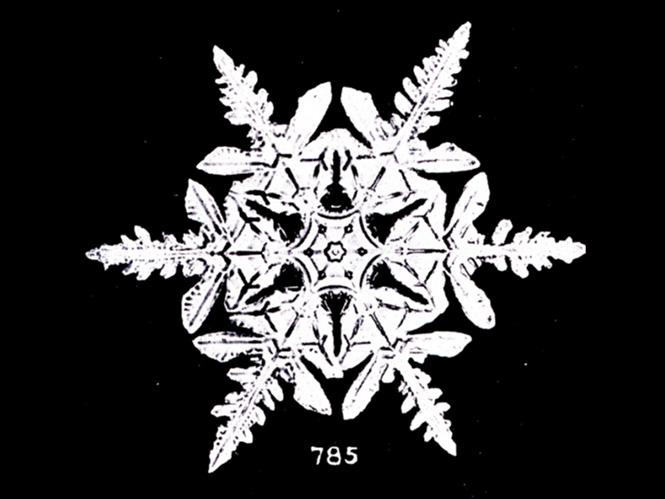 Οι πρώτες φωτογραφίες νιφάδων χιονιού έγιναν το 1885