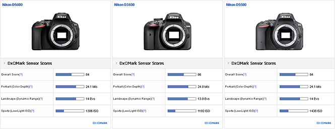 Nikon_D5600__D3400__D5500__920
