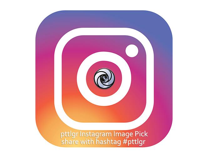 pttlgr Instagram Image Pick
