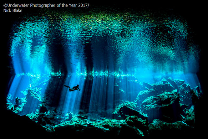 British Underwater Photographer of the Year, 2017: Out of the Blue by Nick Blake