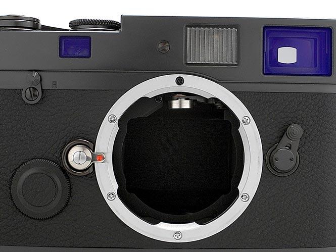 Leica-MP-BLUE-STAIN-002