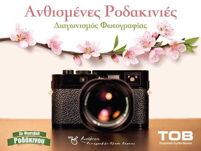 Διαγωνισμός φωτογραφίας: «Ανθισμένες Ροδακινιές»
