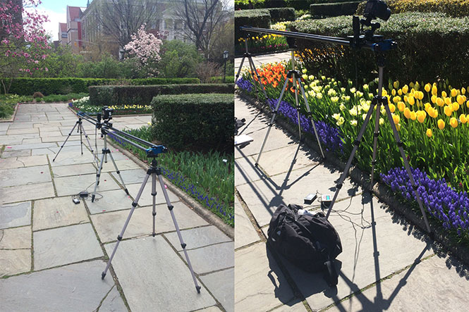 spring-time-lapse-outdoor-slider
