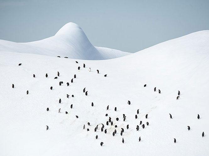 Landscapes: Έκθεση Φωτογραφίας στην Κυψέλη