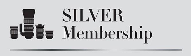 vip_silver