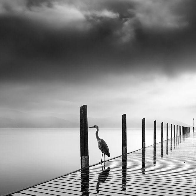 Silent Waters, Έκθεση φωτογραφίας του Γιώργου Διγαλάκη