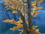 O ιδανικός φωτισμός για τη φωτογραφία τοπίου από έναν ειδικό