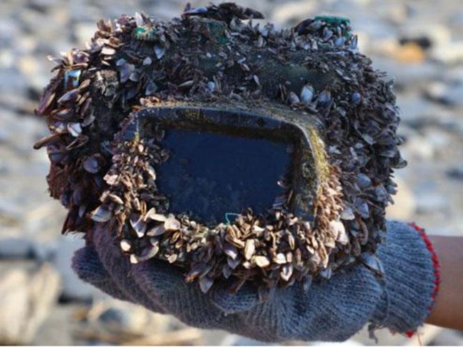 Φωτογραφική μηχανή που χάθηκε στη θάλασσα, βρέθηκε 2 χρόνια μετά, 250 χλμ μακριά