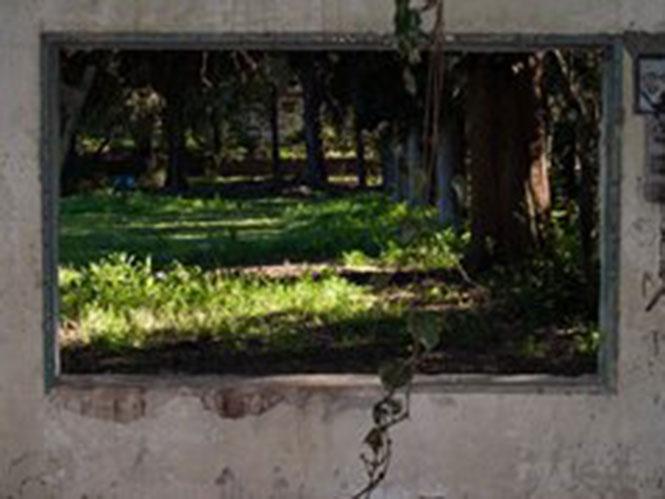Φωτογραφικά Ζεύγη 2018στην Ελληνοαμερικανική Ένωση