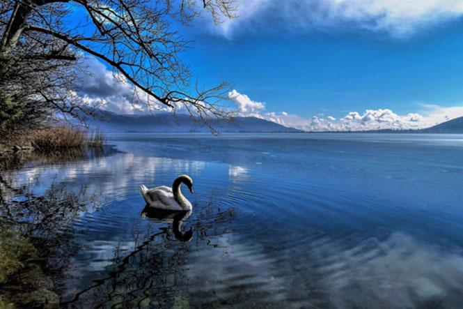 Λίμνες στους φακούς μας: Έκθεση Φωτογραφίας της Out Of Focus