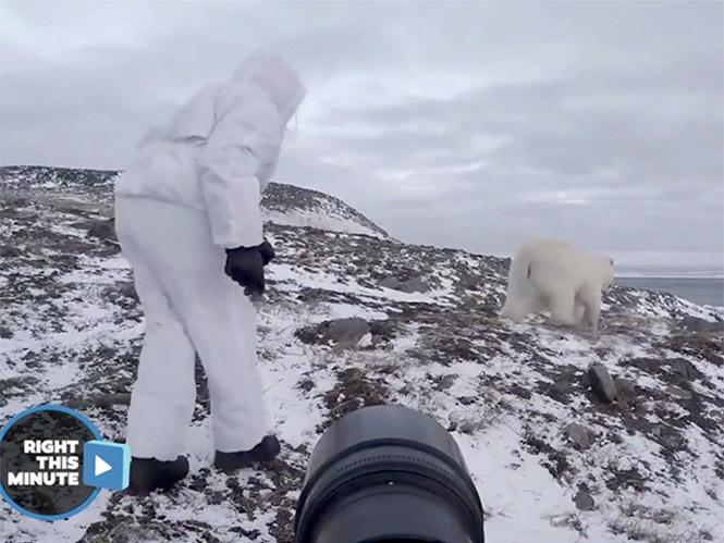 Φωτογράφος παίζει τη ζωή του κορώνα-γράμματα σε συνάντηση  με πολική αρκούδα